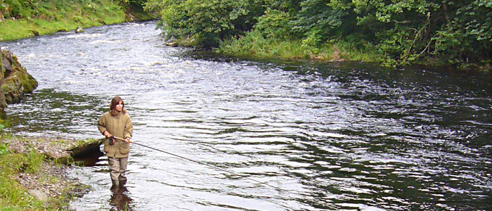 Salmon Fishing on the Novar Fishings, River Alness or River Averon, Ross-shire – Beat 6, Goat's Pool