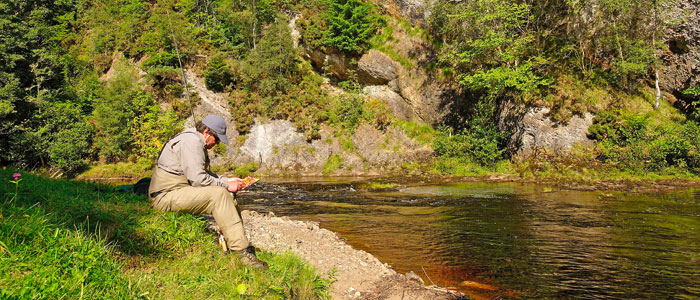 salmon fishing on the novar fishings, river alness or river averon, ross-shire –  beat 4, raven's rock