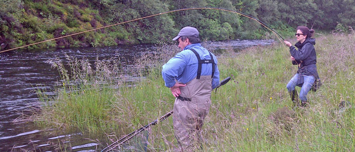 salmon fishing on the novar fishings, river alness or river averon, ross-shire – spring salmon on a trout rod