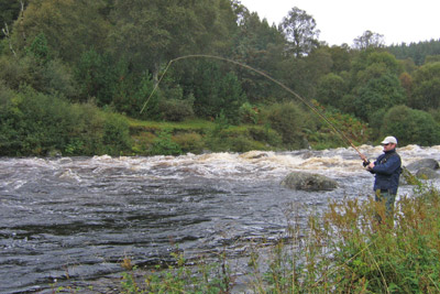 novar fishings, river alness, salmon fishing tips, very high water beat 2